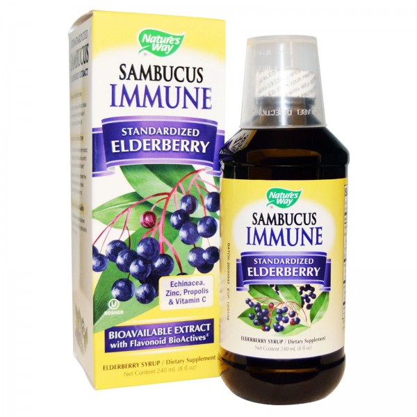 Nature's Way Sambucus Immune Syrup 120ml