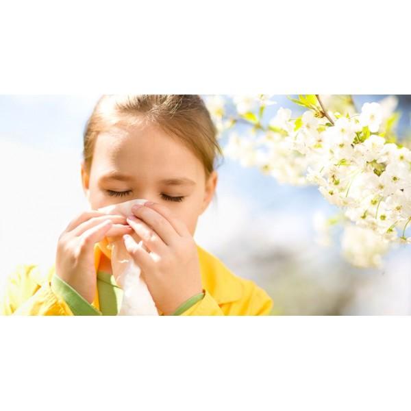 Sanderson Sinus & Allergy FX 60 Capsules